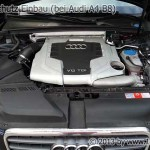 Audi A4 B8 Marderschutz Einbau fertig